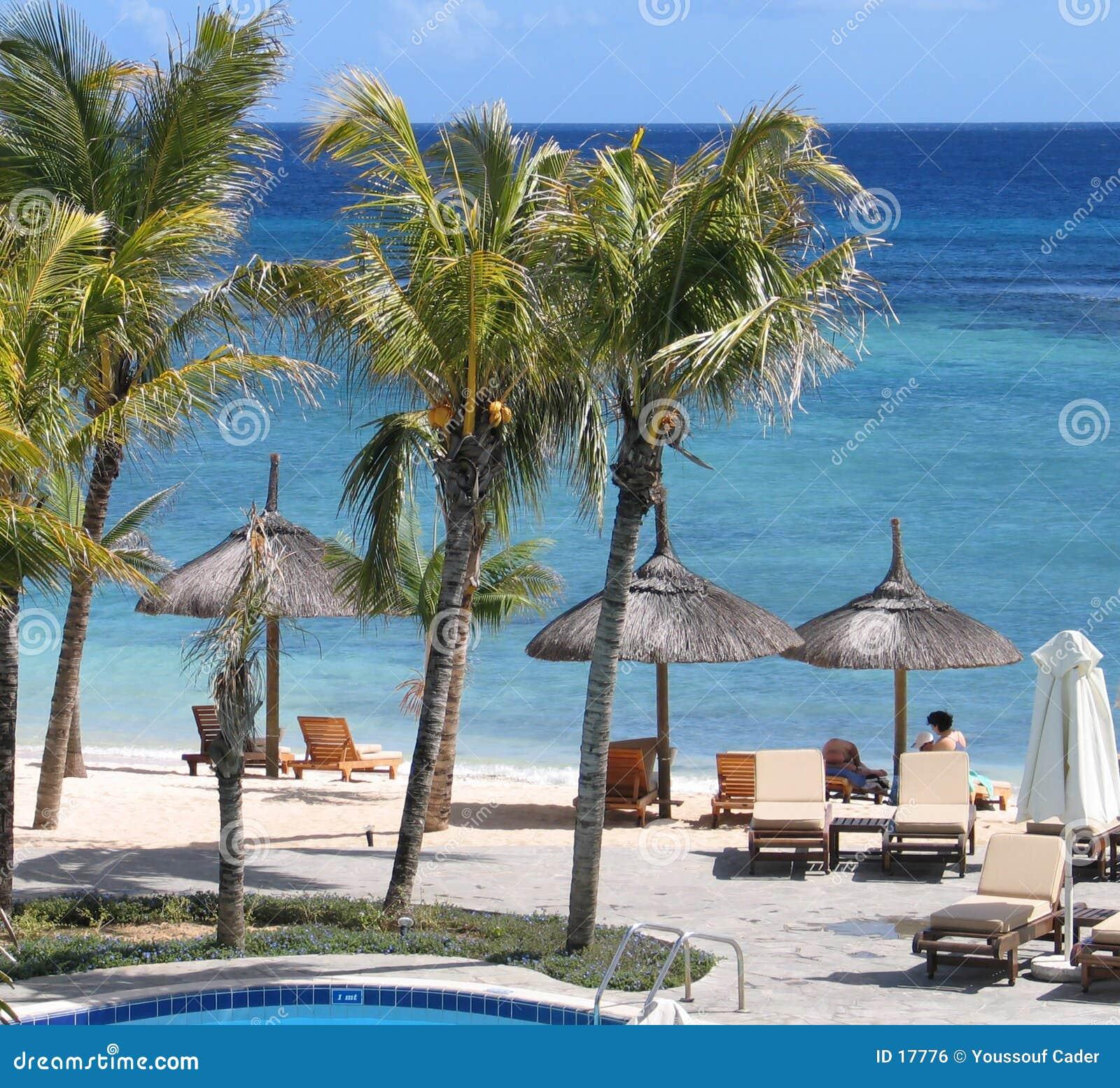 Vista 21 della spiaggia