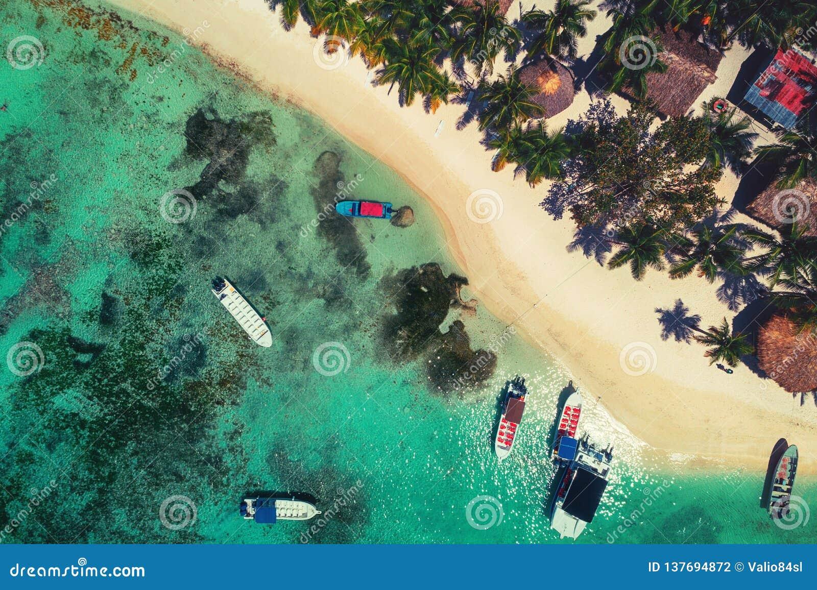 Vista aérea da praia tropical da ilha no recurso de Punta Cana, República Dominicana