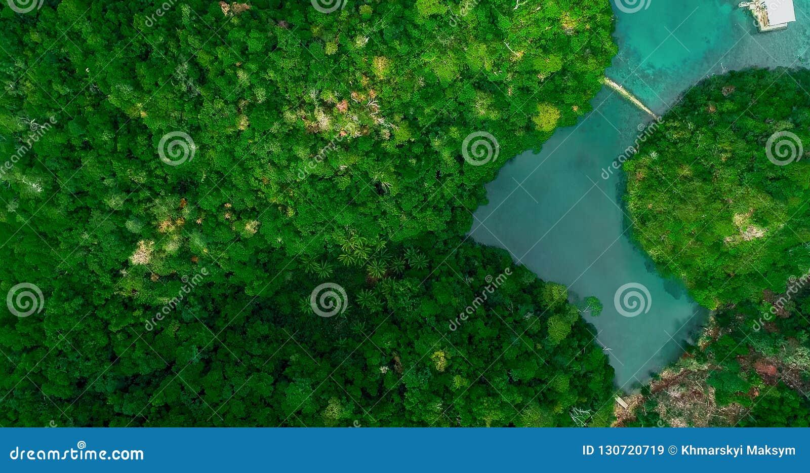 Vista aérea de la laguna de Sugba Paisaje hermoso con la laguna azul del mar, parque nacional, isla de Siargao, Filipinas