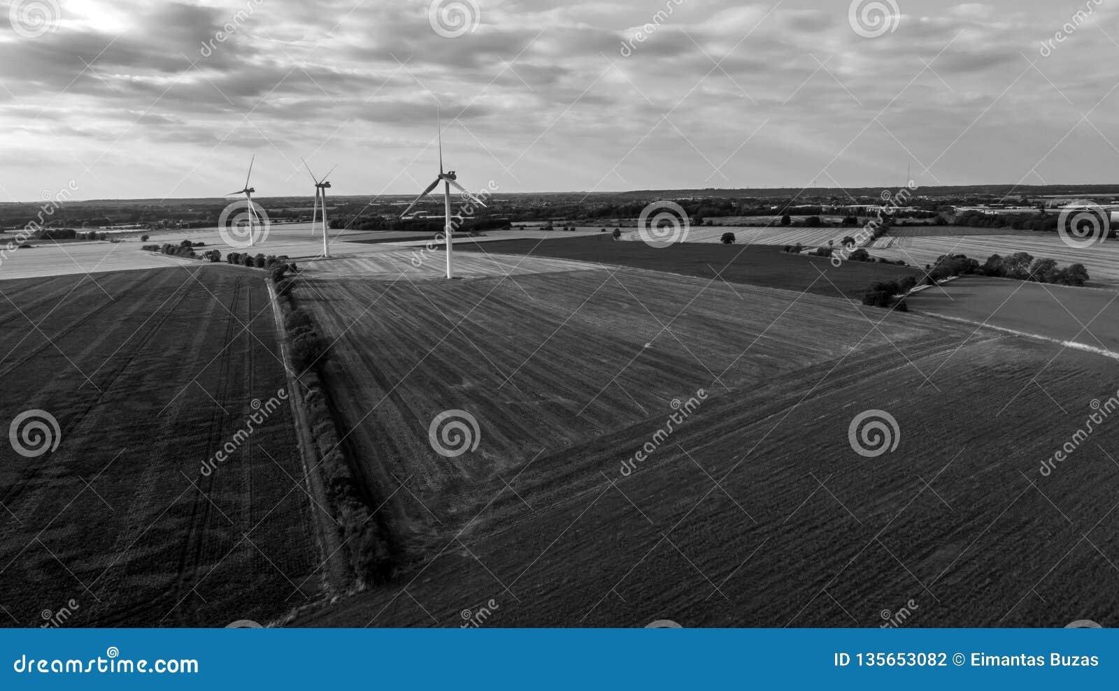 Vista aérea de Windfarm terrestre em preto e branco