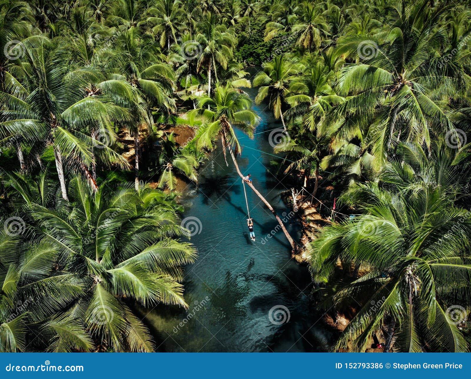 Vista aérea del oscilación de la cuerda en la isla de Siargao - las Filipinas