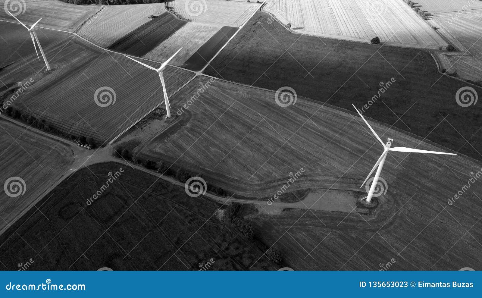 Vista aérea preto e branco de Windfarm