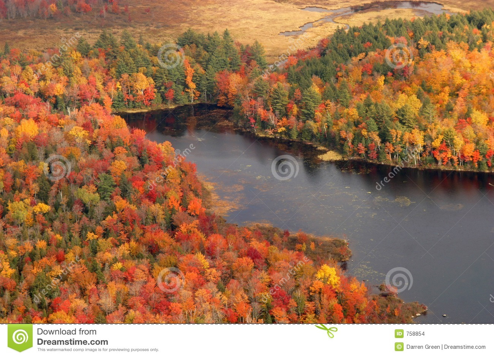 Vista aerea dei colori cambianti di caduta della Nuova Inghilterra