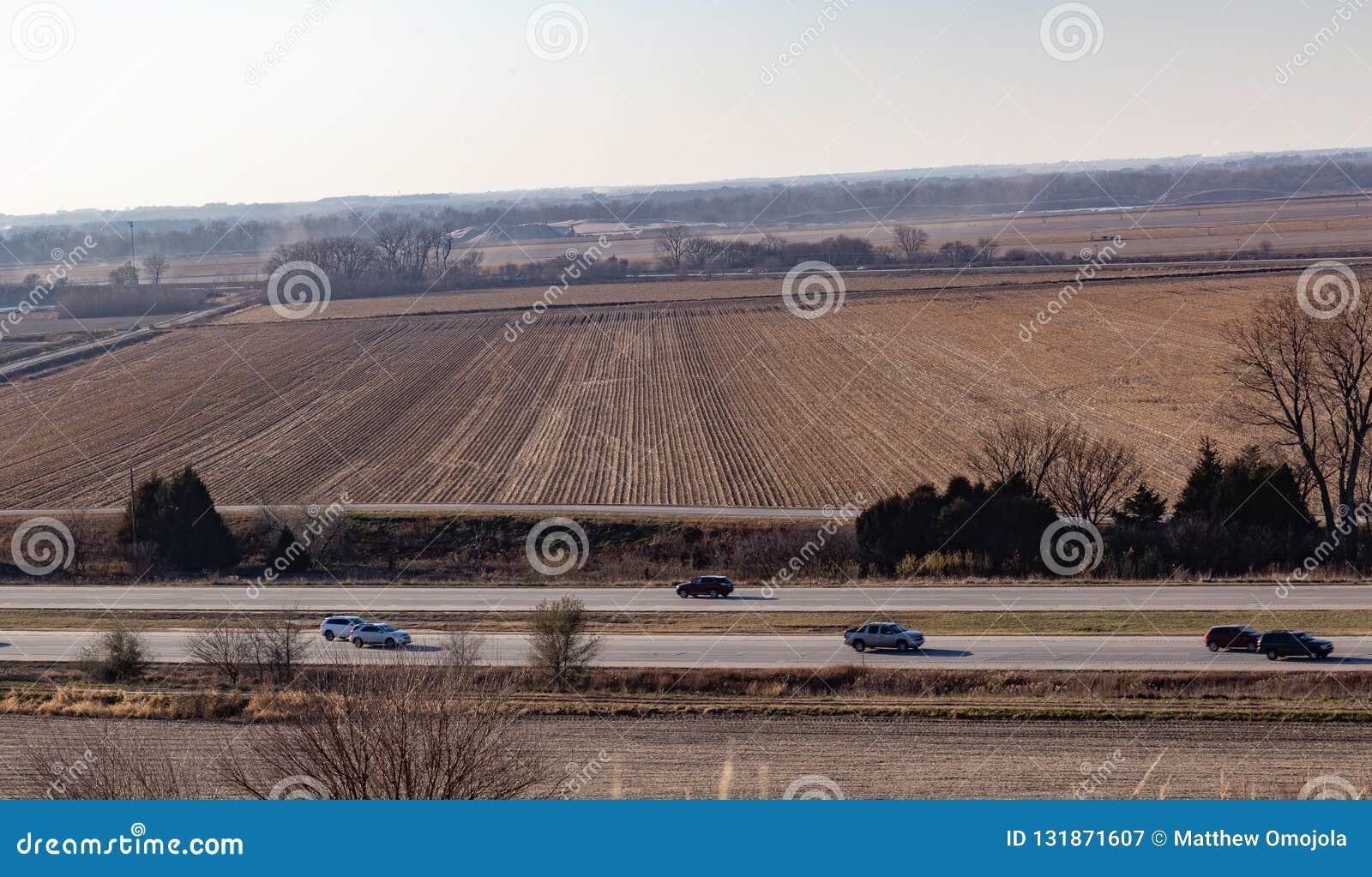 Vista aerea delle file di cereale maturo su un azienda agricola in Gretna Nebraska