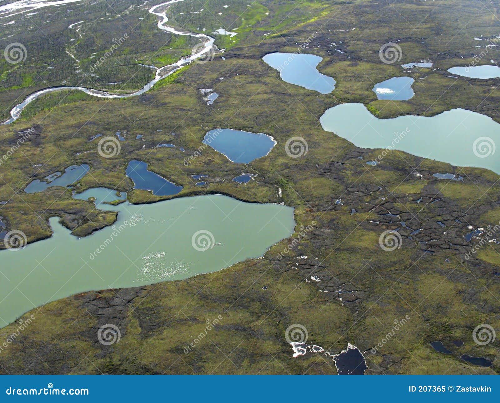 Vista aerea sul paesaggio della tundra