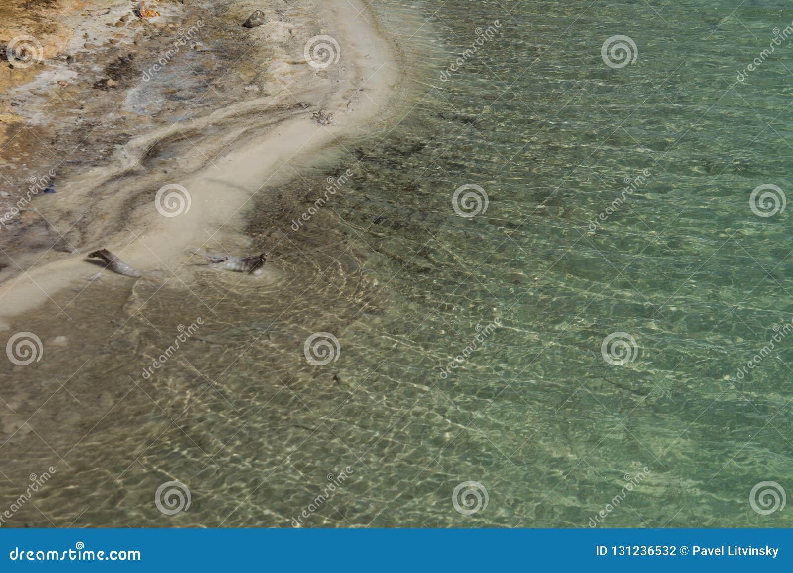 Vista ascendente cercana de los cristales de la sal y de la formación mineral en la orilla del mar muerto en el cuidado de Israel