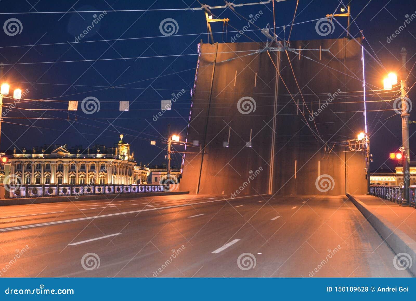 Vista bonita da ponte na noite, St Petersburg, Rússia