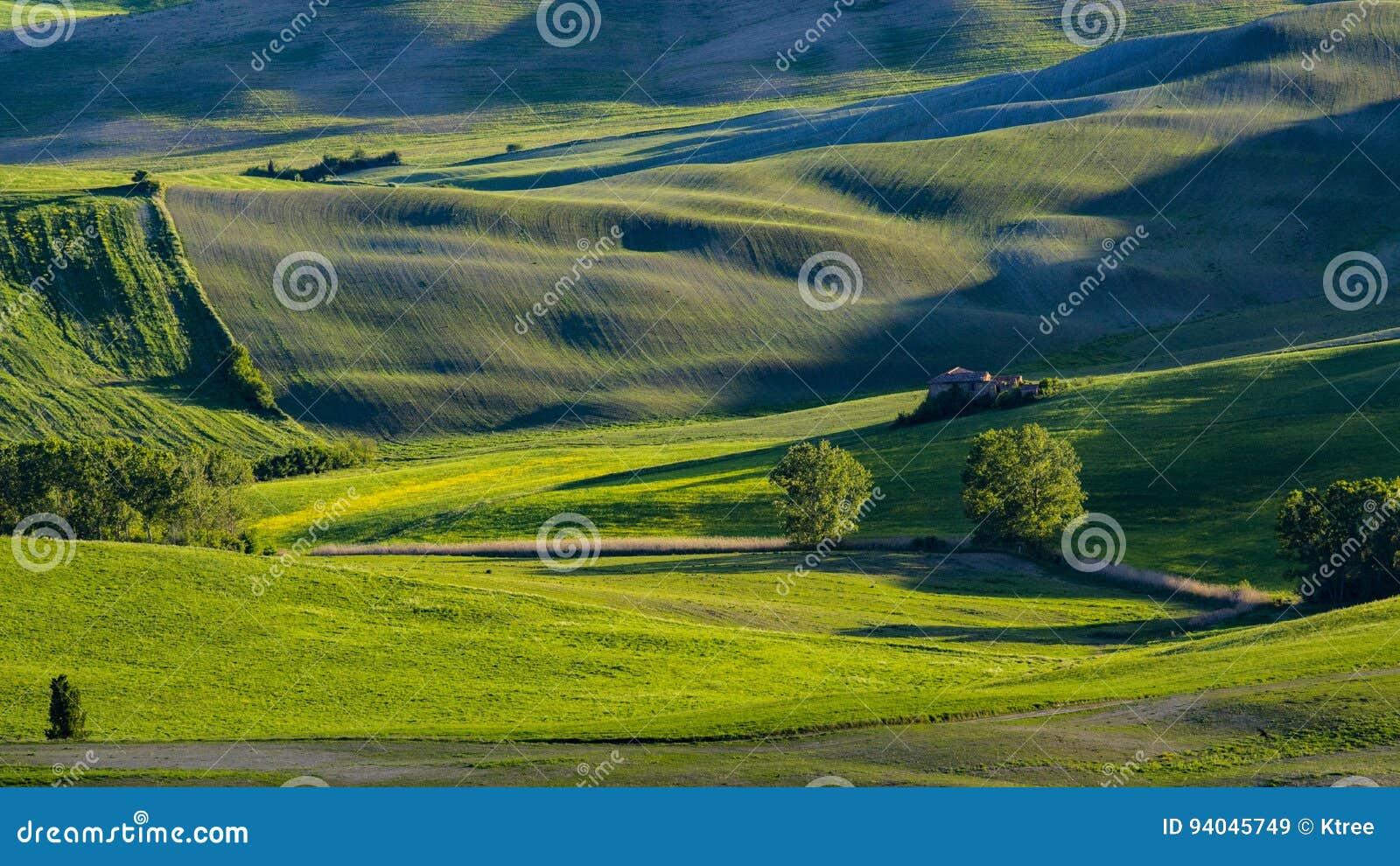 Vista bonita de campos e de prados verdes no por do sol em Toscânia