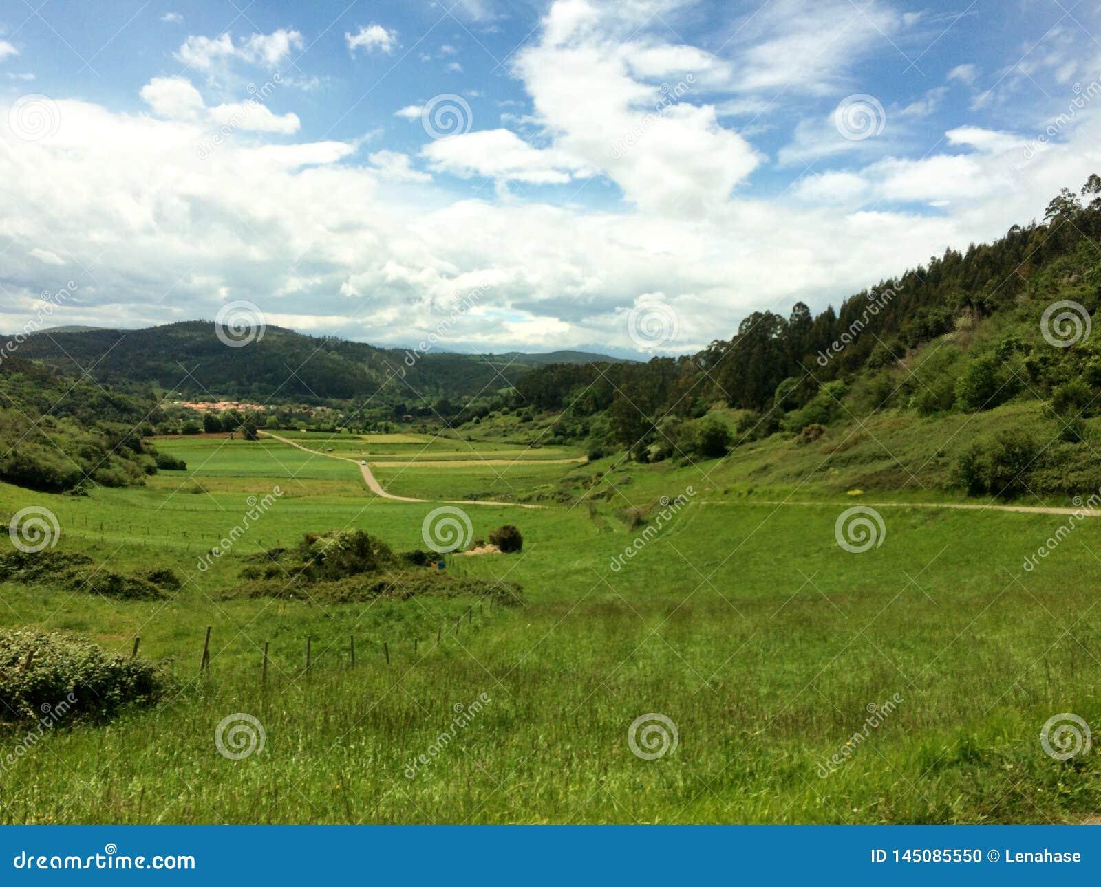 Vista bonita sobre o campo verde ao longo do camino del norte em spain