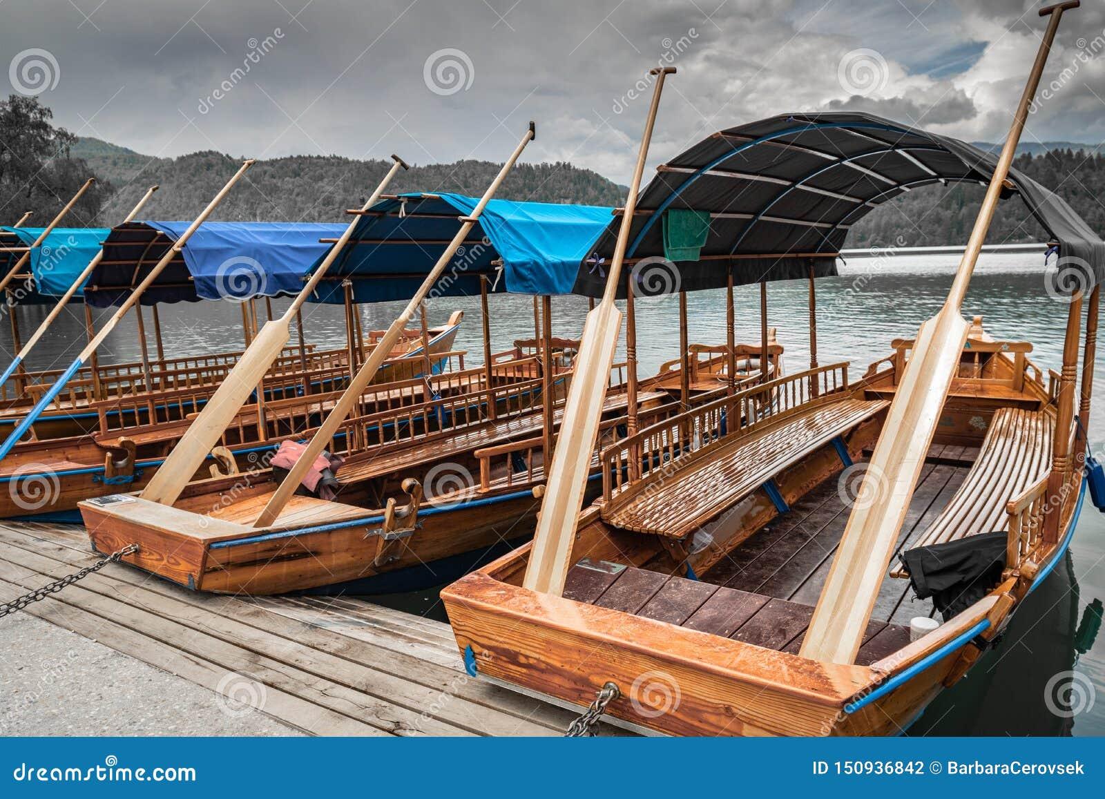 A vista cênico no pletna liso de madeira bonito dos barcos de enfileiramento no lago sangrado, slovenia, vai conceito verde