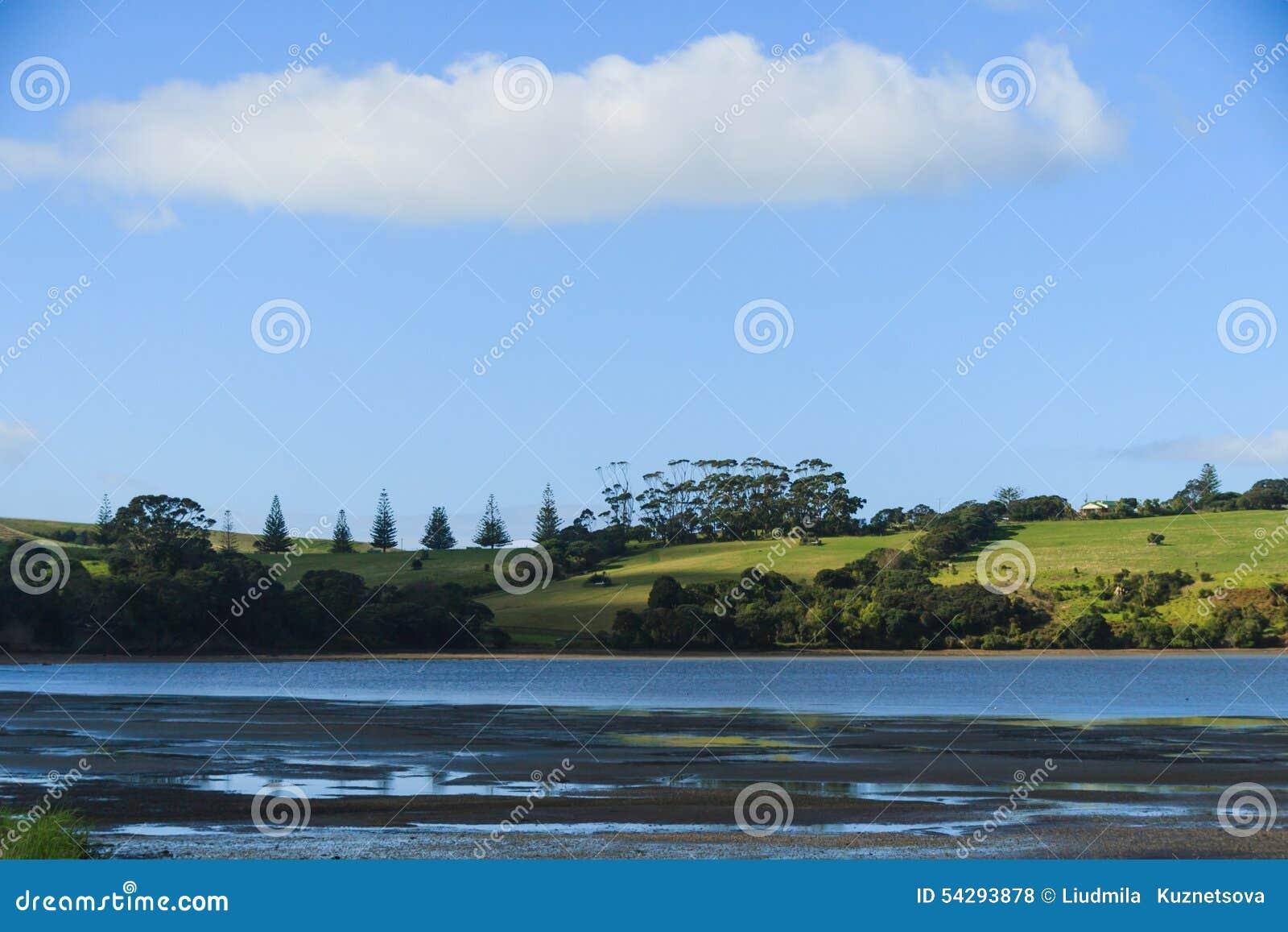 Vista dalla baia di Okoromai sul parco Nuova Zelanda di Shakespear