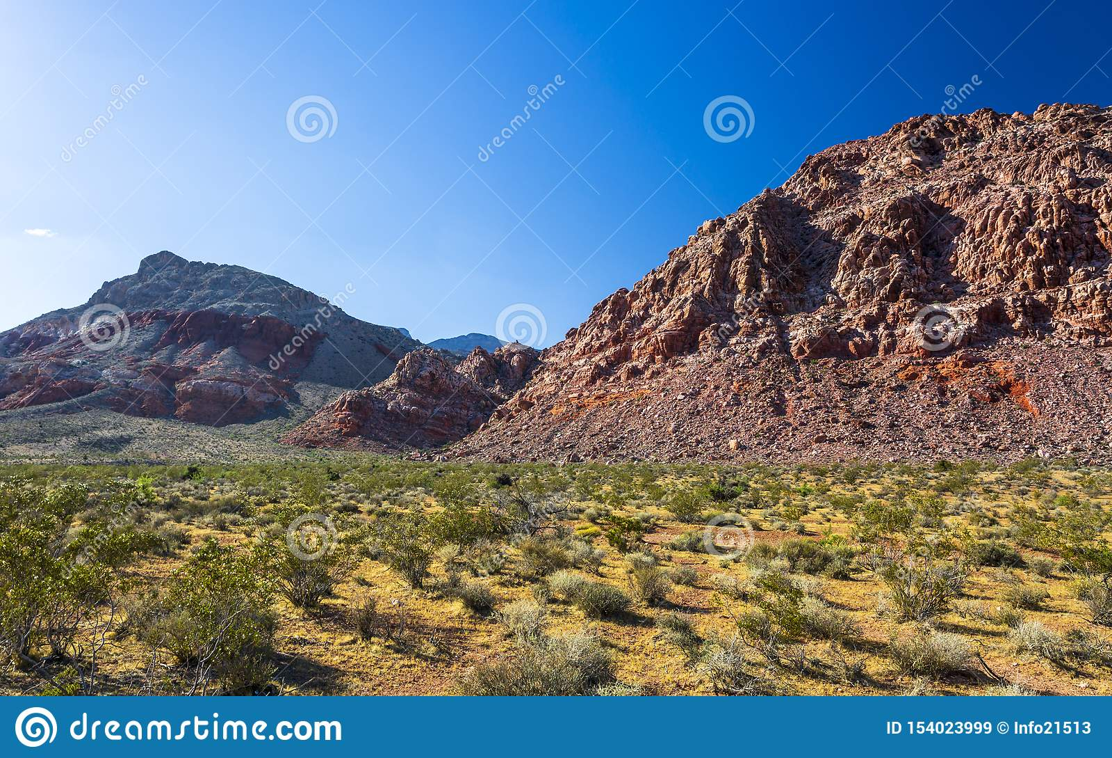 Vista de formações e de flora de rocha na área de recreação nacional da garganta vermelha da rocha