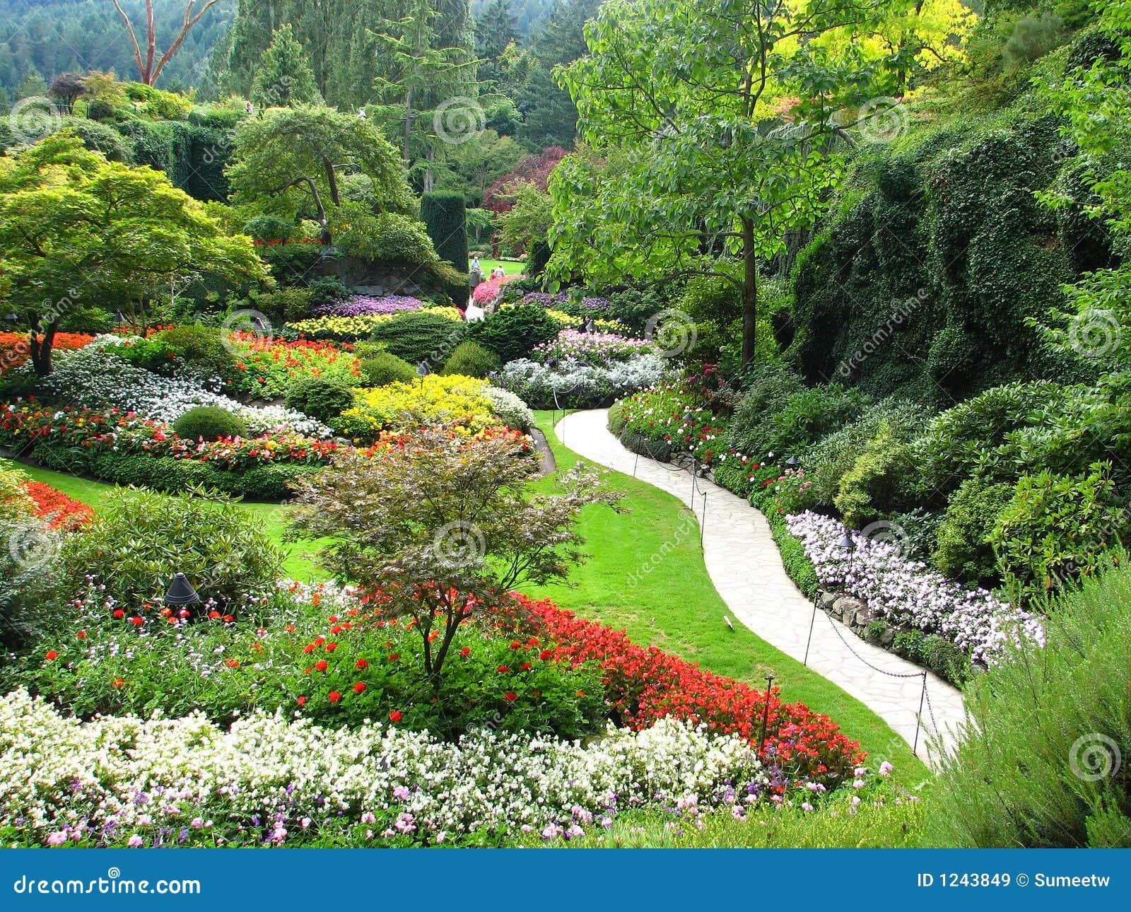 Vista de jardins sunken bonitos (jardins de Butchart) durante o verão