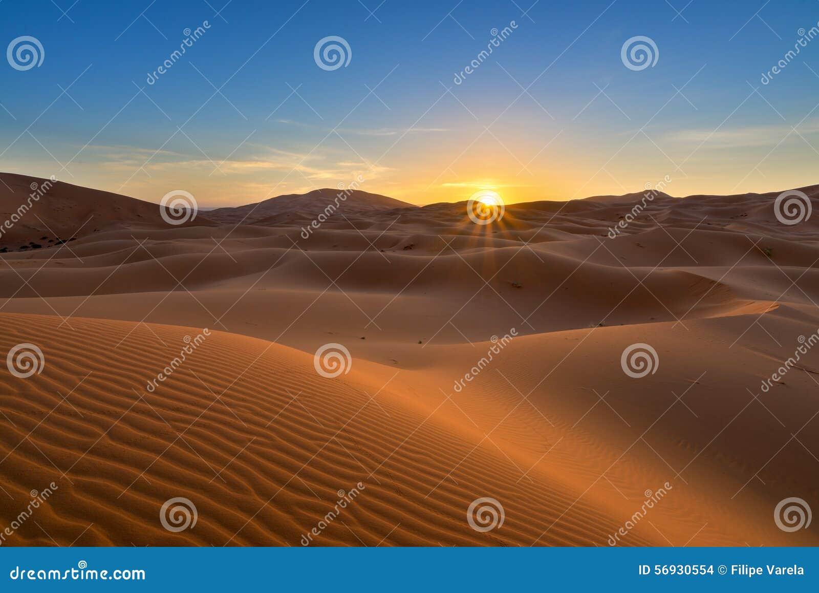 Vista de las dunas de Chebbi del ergio - Sahara Desert