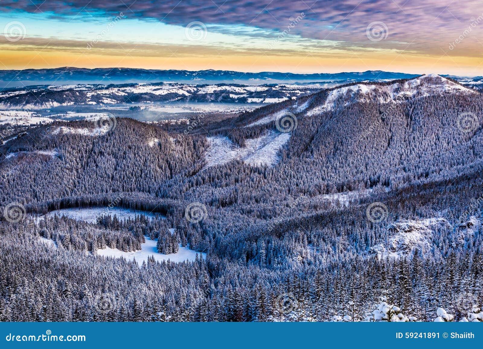 Vista de los picos de montaña de un rastro de montaña