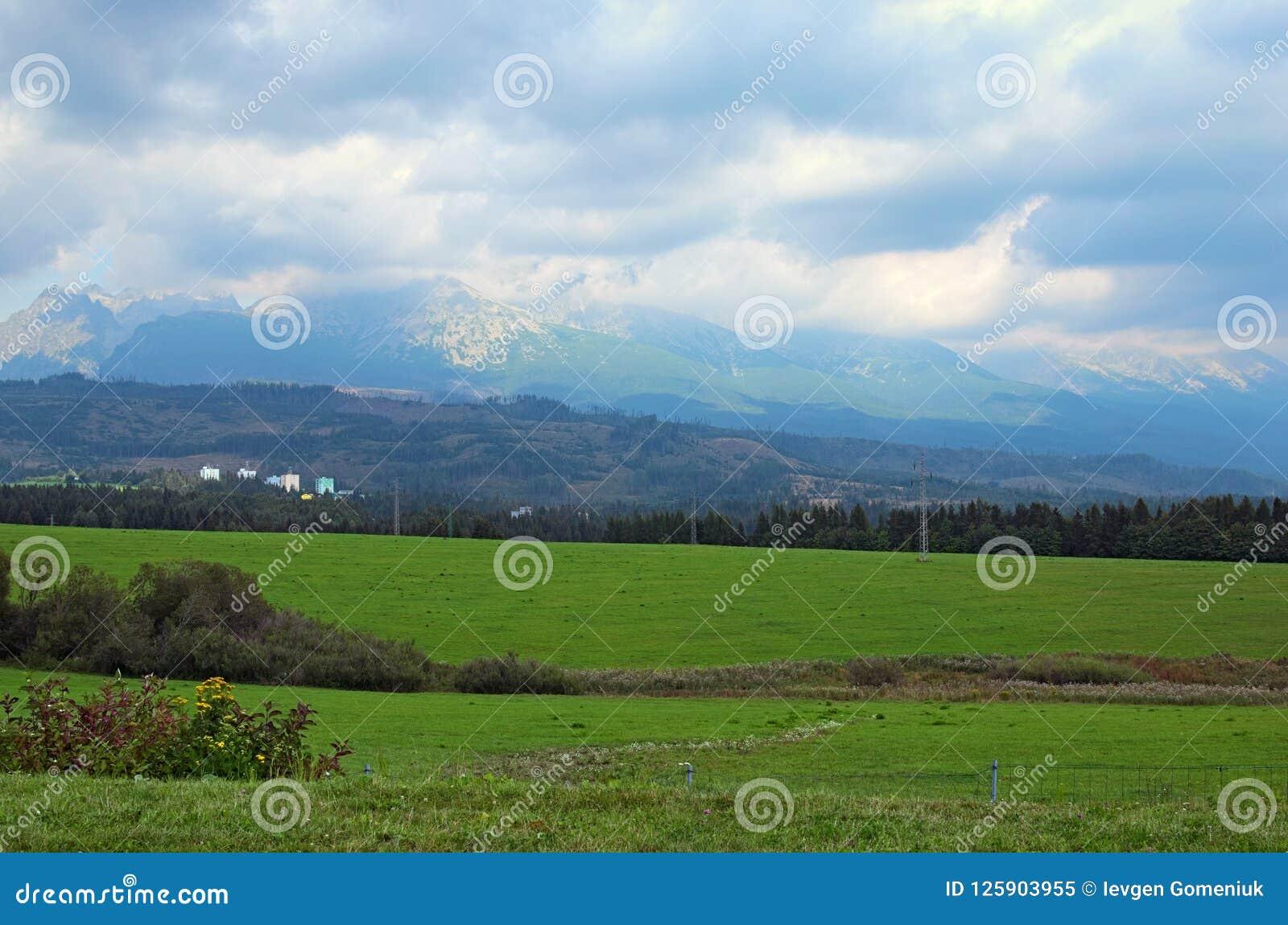 Vista de picos de montanha e do prado verde na paisagem de montanhas de Tatra, Eslováquia do verão