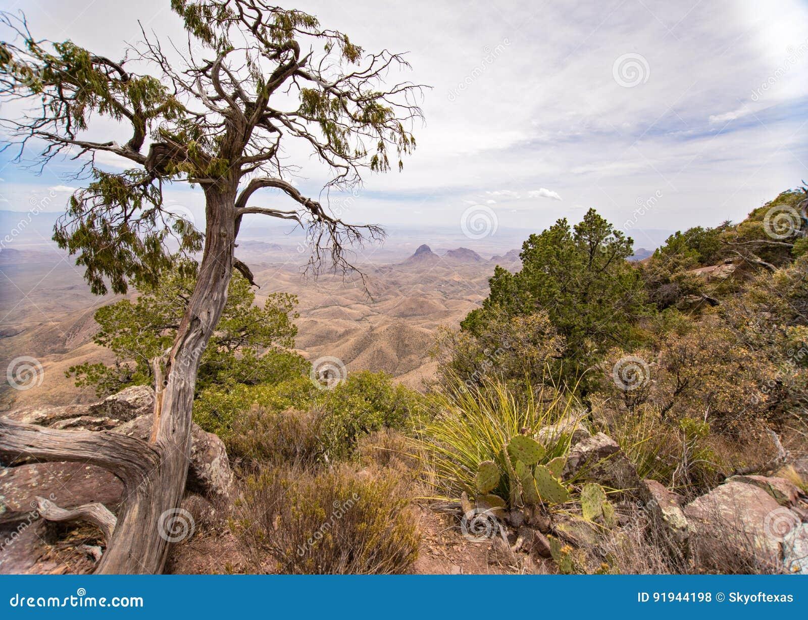 Vista de Rim Trail sul no parque nacional de curvatura grande