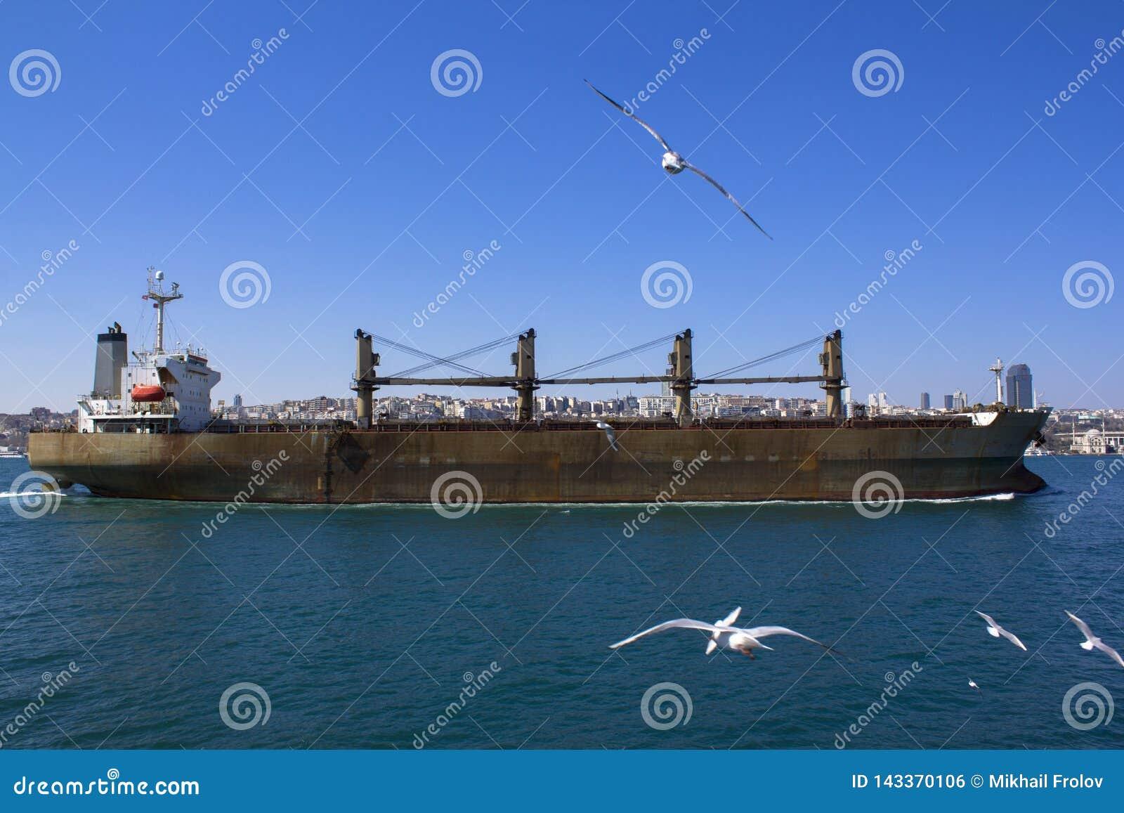 Vista del Bosphorus e le navi e le chiatte che navigano con  Vista di Costantinopoli con il Bosphorus