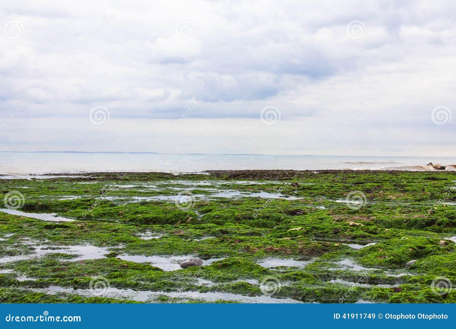 Vista del la Mancha del canal