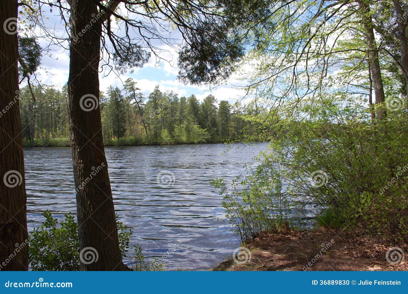 Download Vista del lago fotografia stock. Immagine di sterile - 36889830