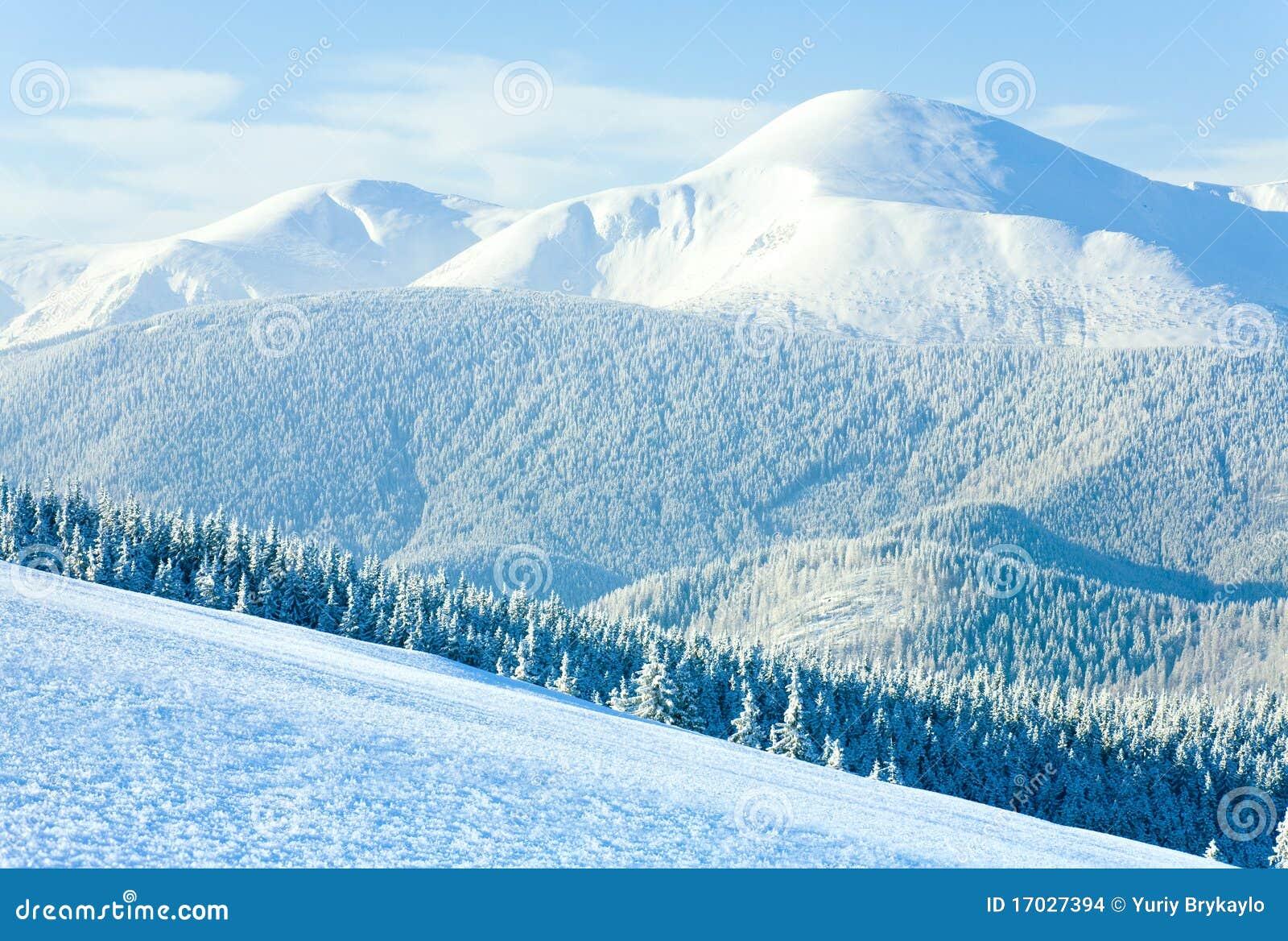 Vista del supporto di Goverla di inverno (Ucraina)