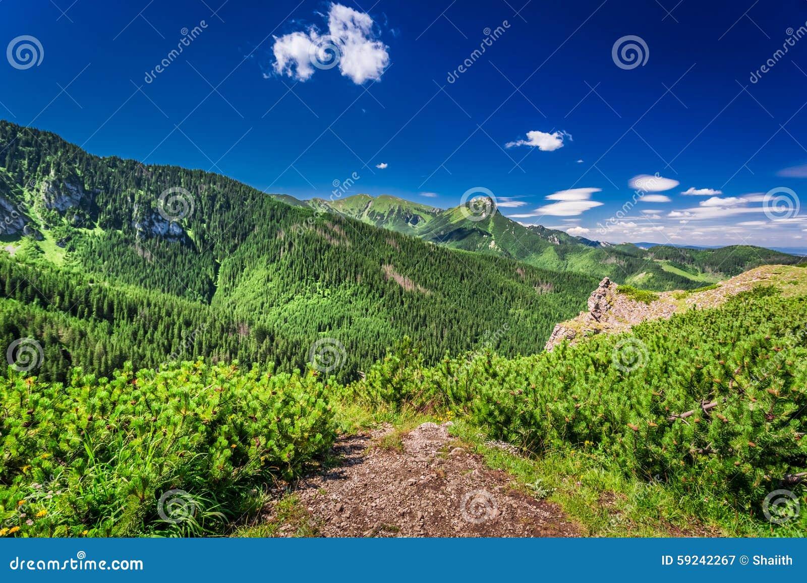 Download Vista Del Valle De La Montaña Del Pico Imagen de archivo - Imagen de polonia, colina: 59242267