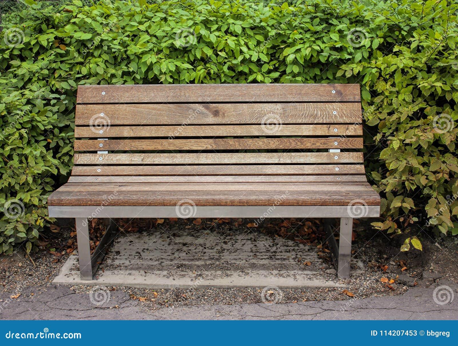 Vista delantera del banco de madera en la acera en parque, día soleado con los arbustos en fondo