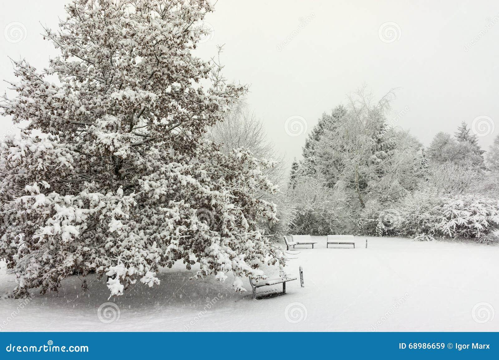 Vista della via di Hannover al giorno di inverno