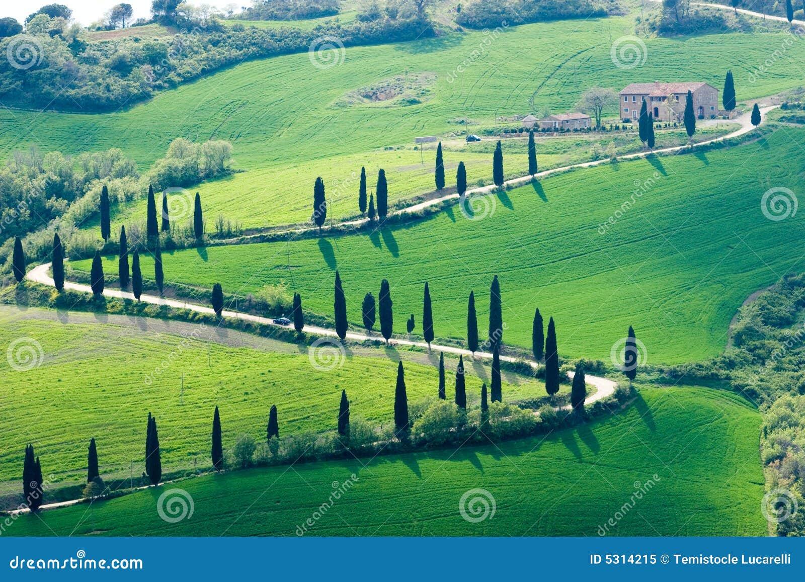 Download Vista delle colline immagine stock. Immagine di alberi - 5314215