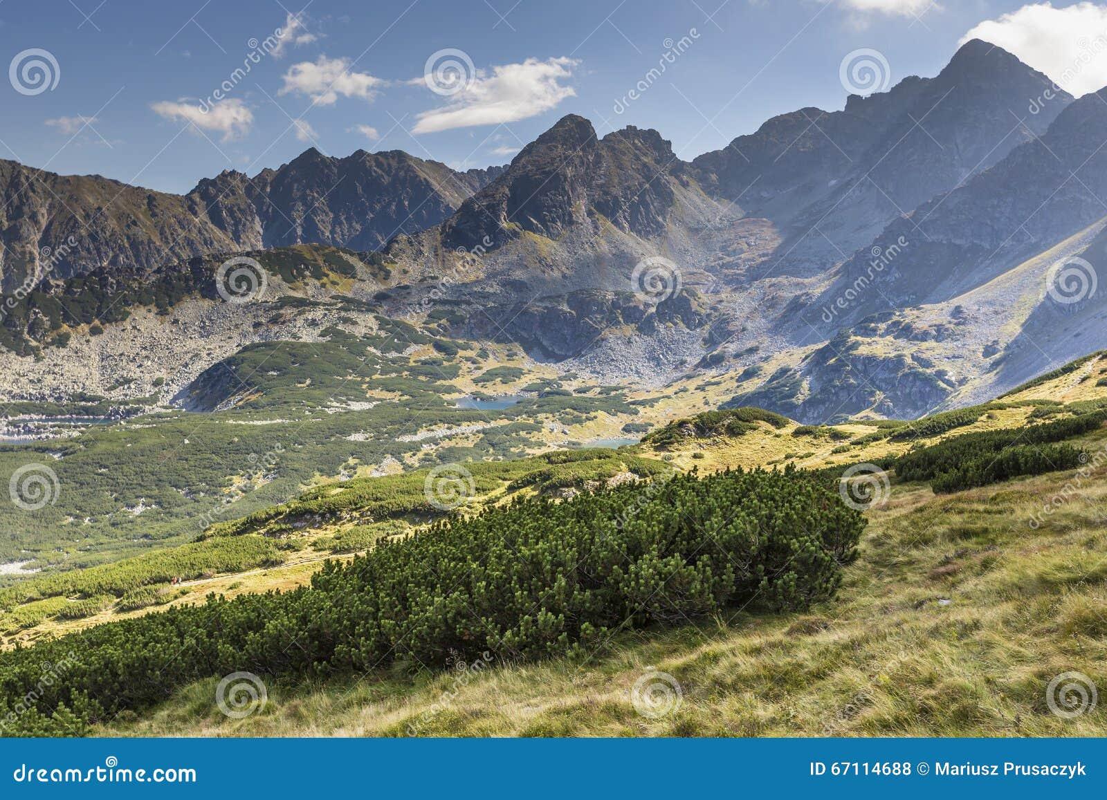 Vista delle montagne di Tatra dalla traccia di escursione poland europa