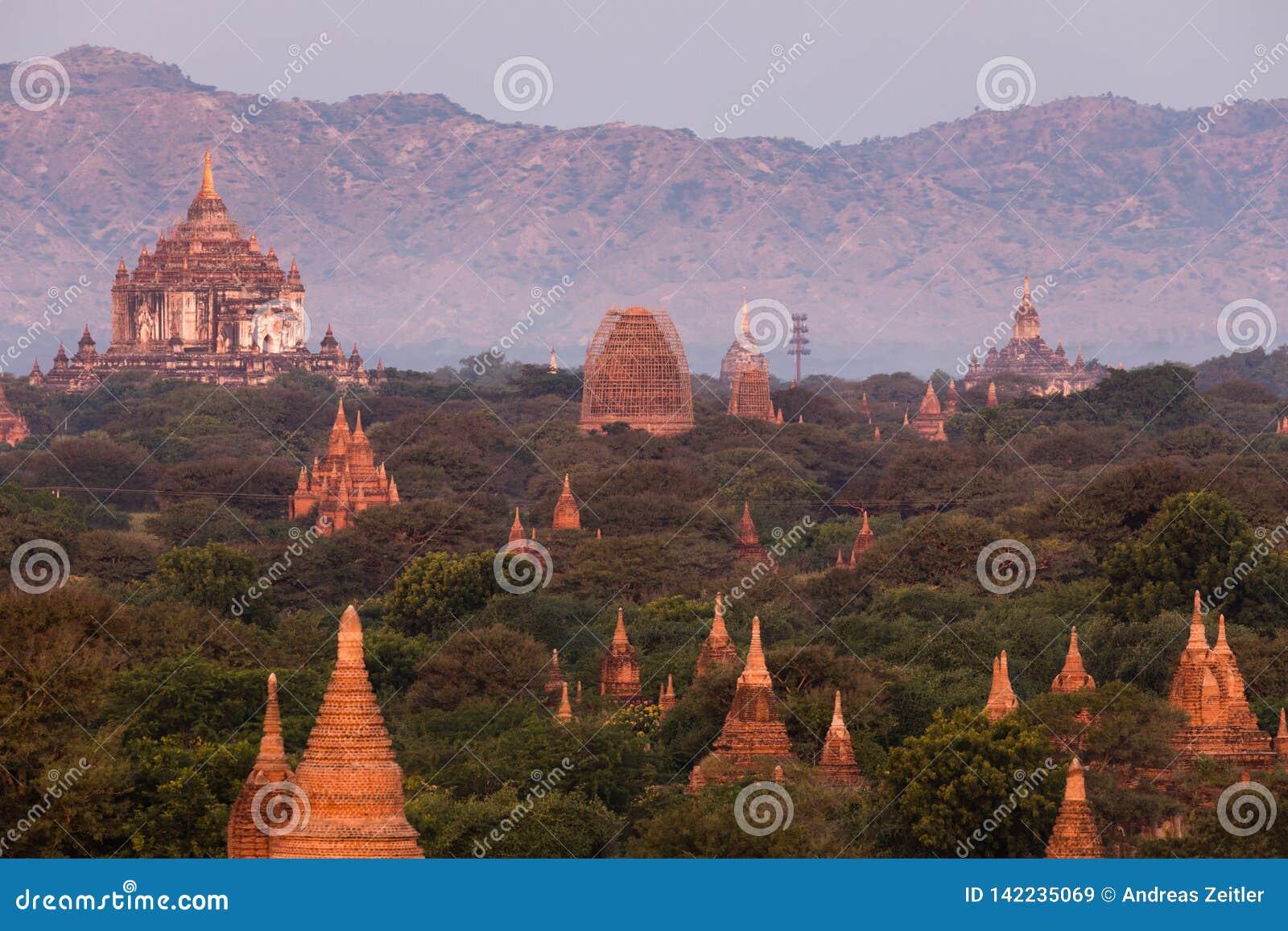 Vista delle tempie antiche nella mattina nebbiosa, alba in Bagan, Myanmar (Birmania