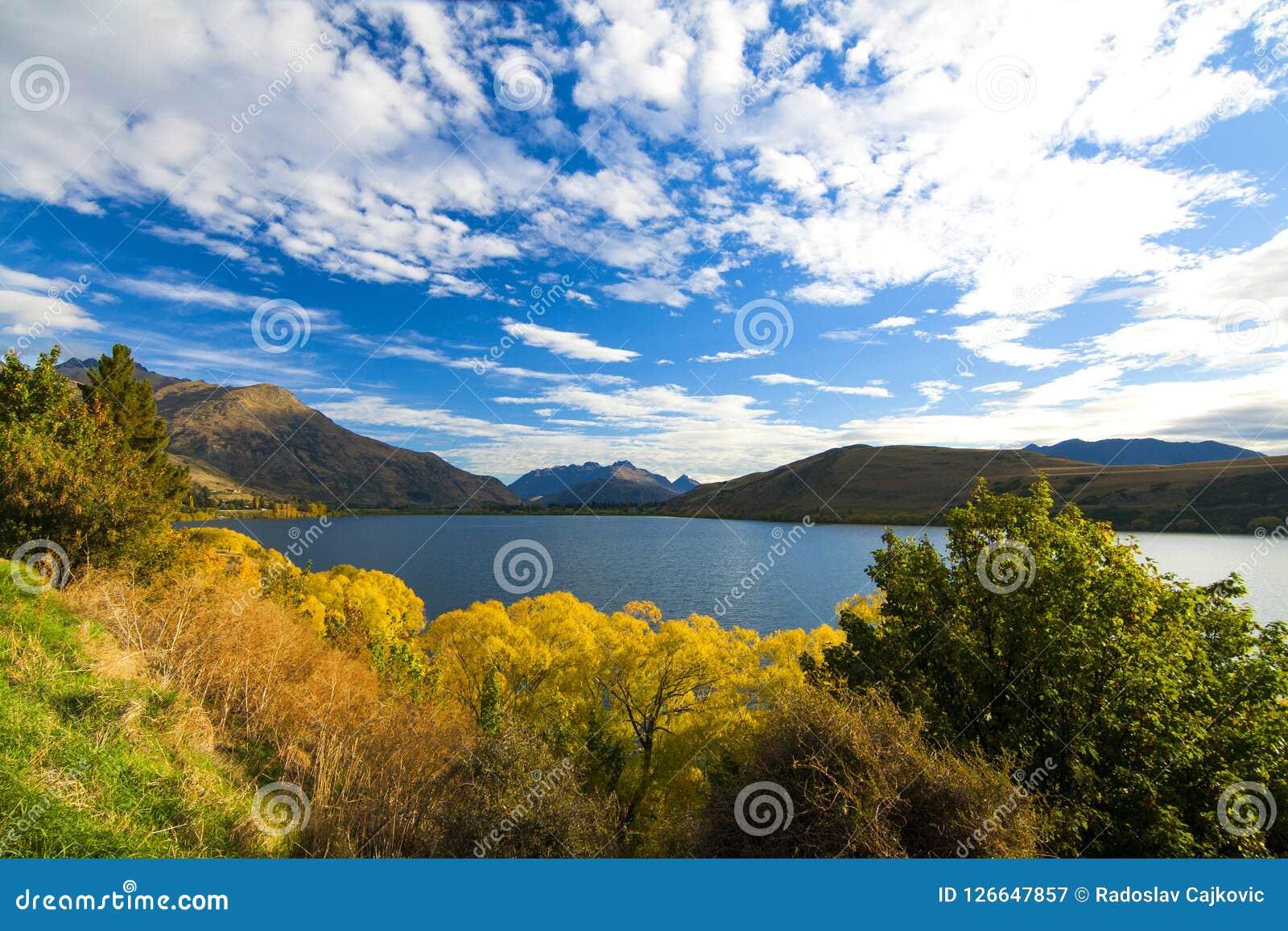Vista di autunno del lago Hayes, delle foglie colourful dell albero e delle colline asciutte della regione di Otago, Nuova Zeland