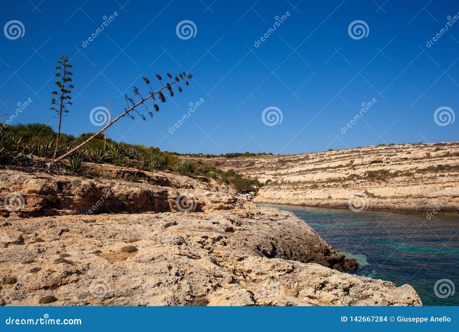 Vista di Cala Greca