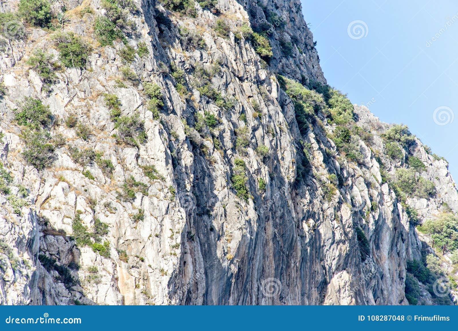 Vista di luce del giorno dal fondo alle montagne verdi in pieno dei cespugli