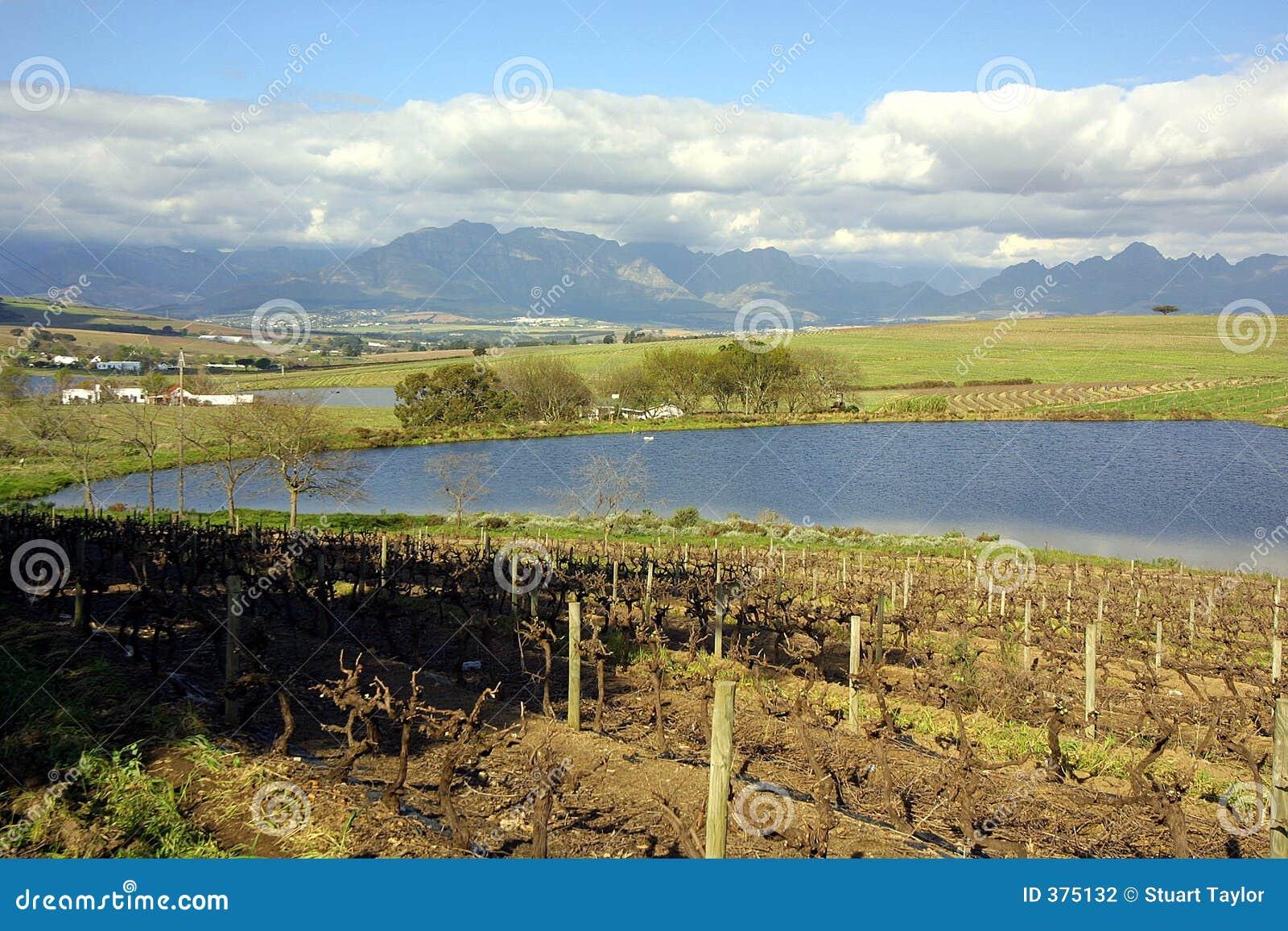 Vista di Stellenbosch