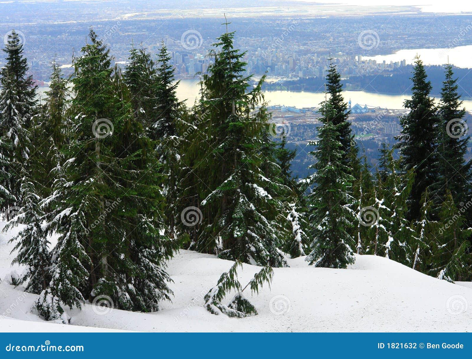 Vista di Vancouver