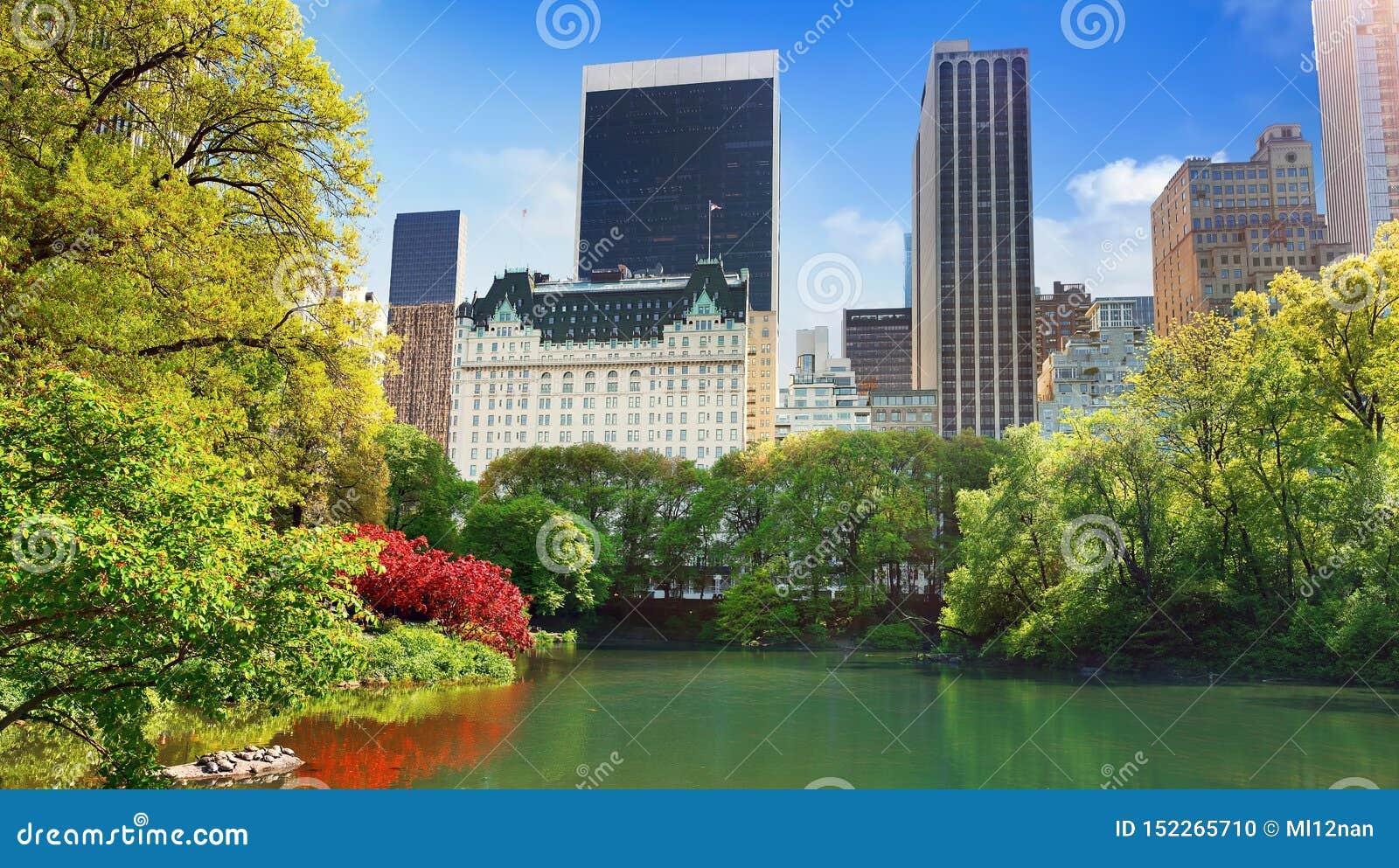 Vista do Central Park, Manhattan, NYC