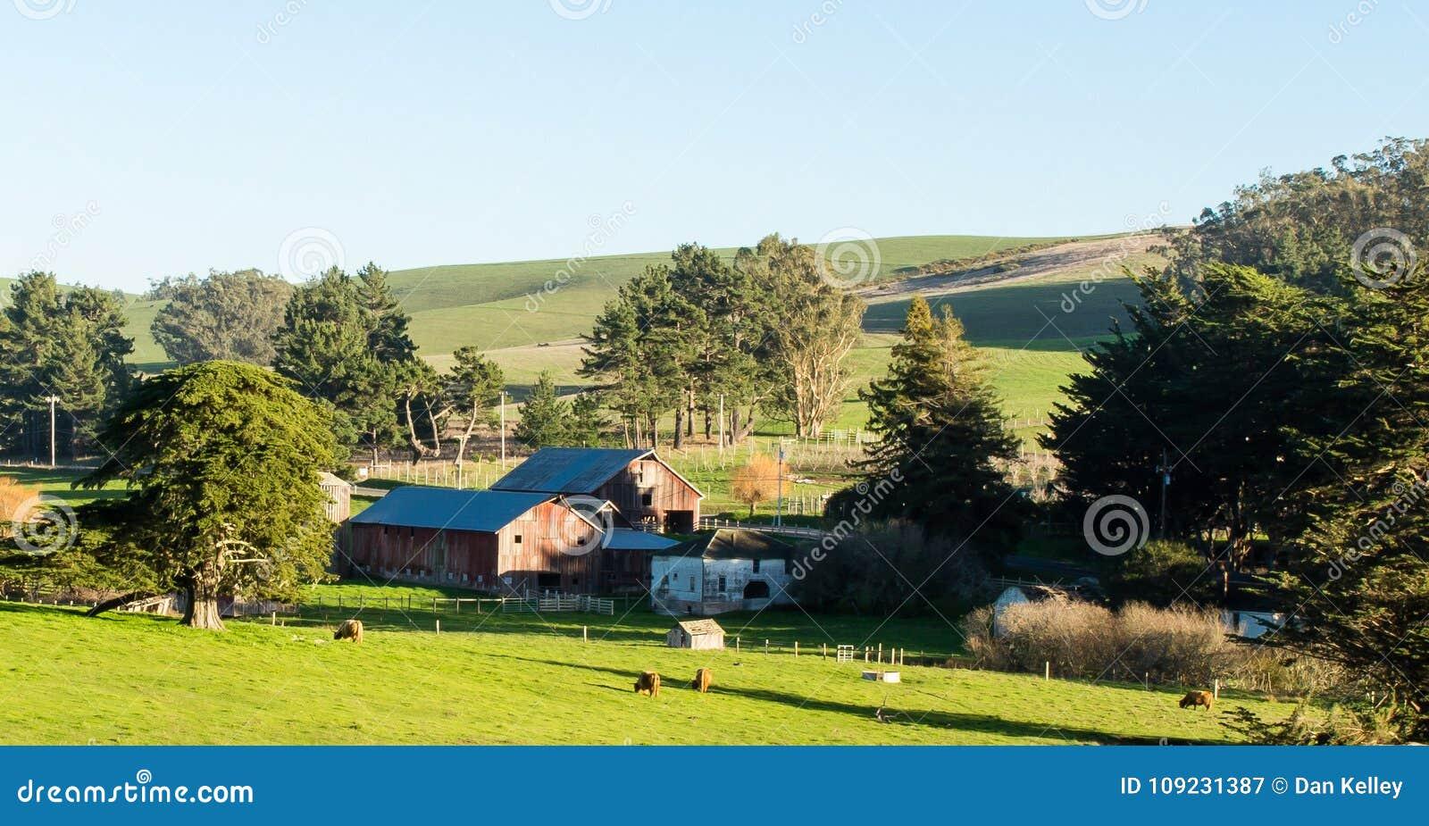 Vista do rancho em Tomales Califórnia em um dia de inverno ensolarado