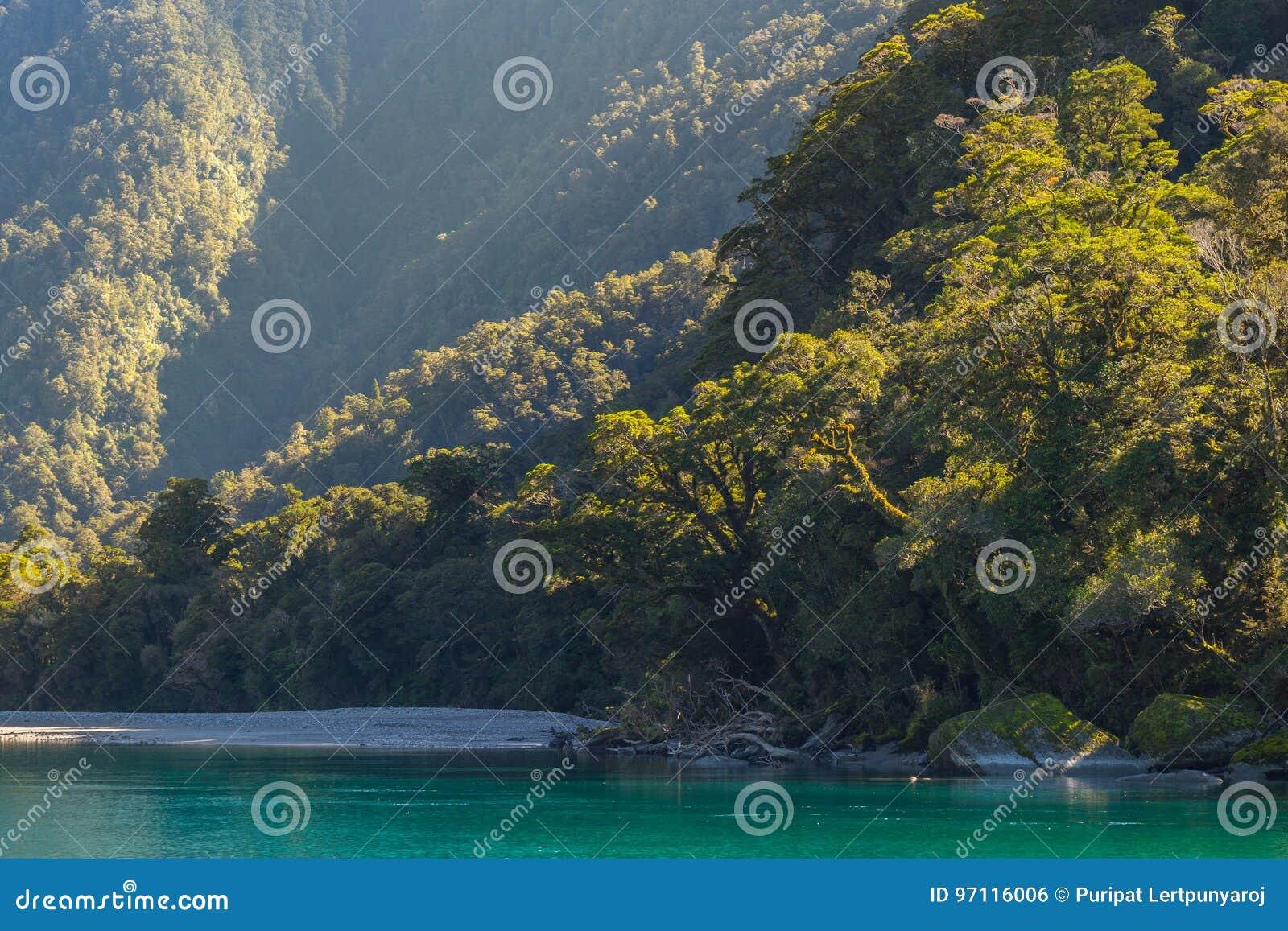 Vista do rio de Hasst de rujir Billy Falls Track, situada no parque nacional de aspiração do Mt, Nova Zelândia
