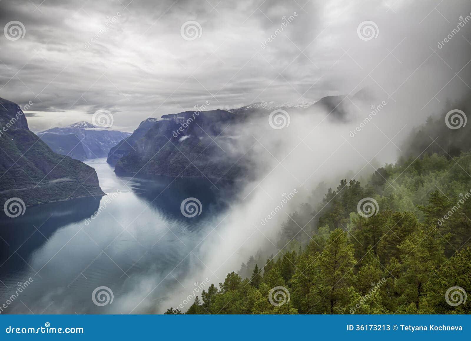 Vista drammatica a Sognefjord in Norvegia