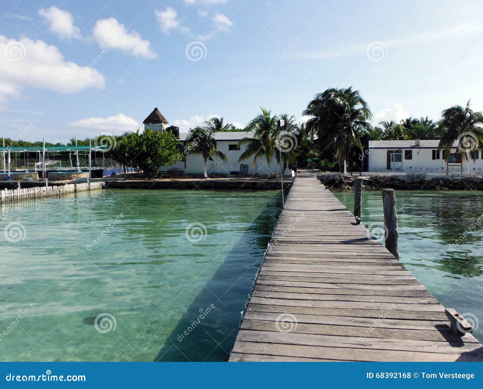 Vista exterior de un criadero del Caribe de la tortuga