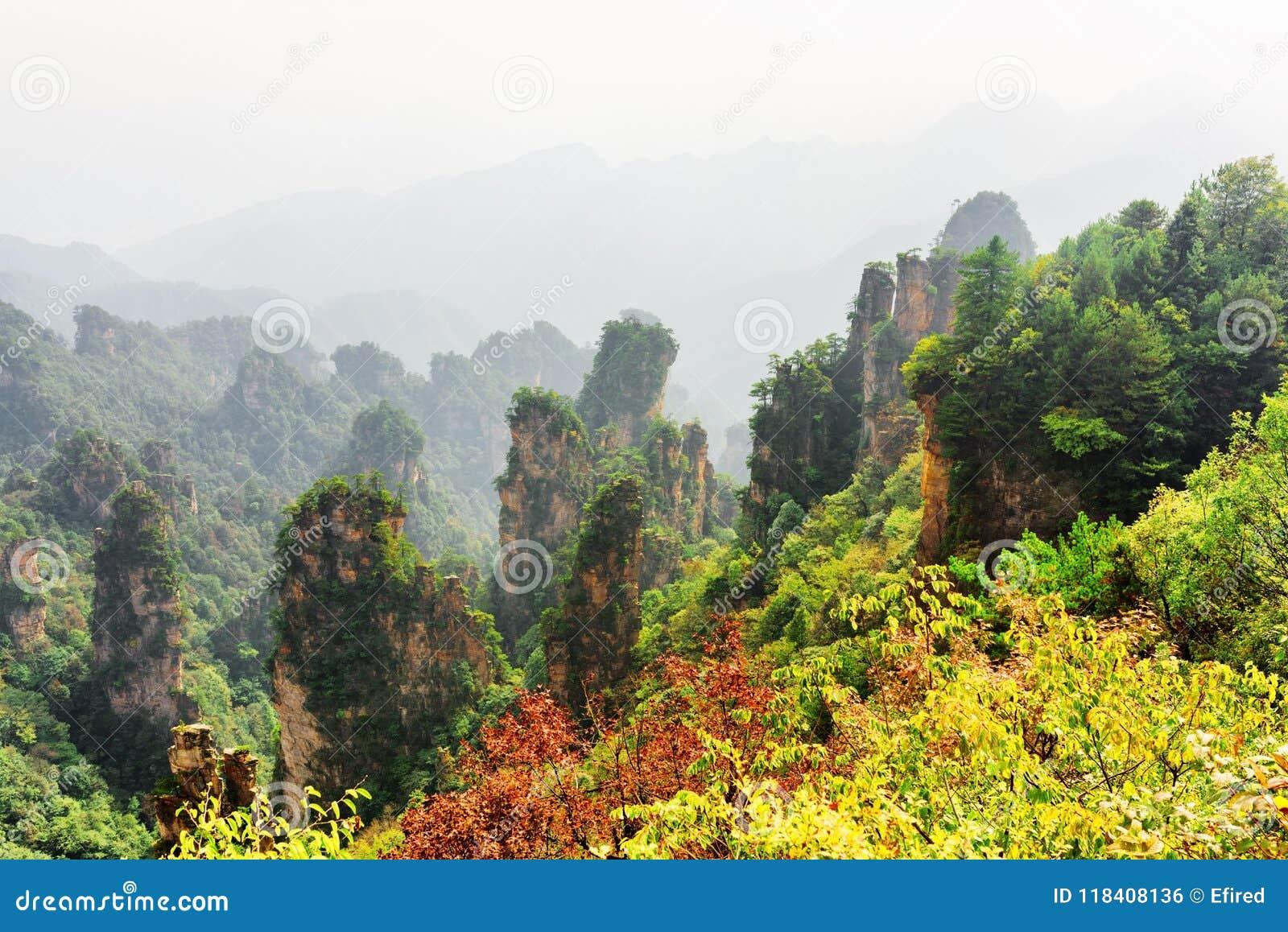 Vista fantástica de colunas naturais arborizadas do arenito de quartzo