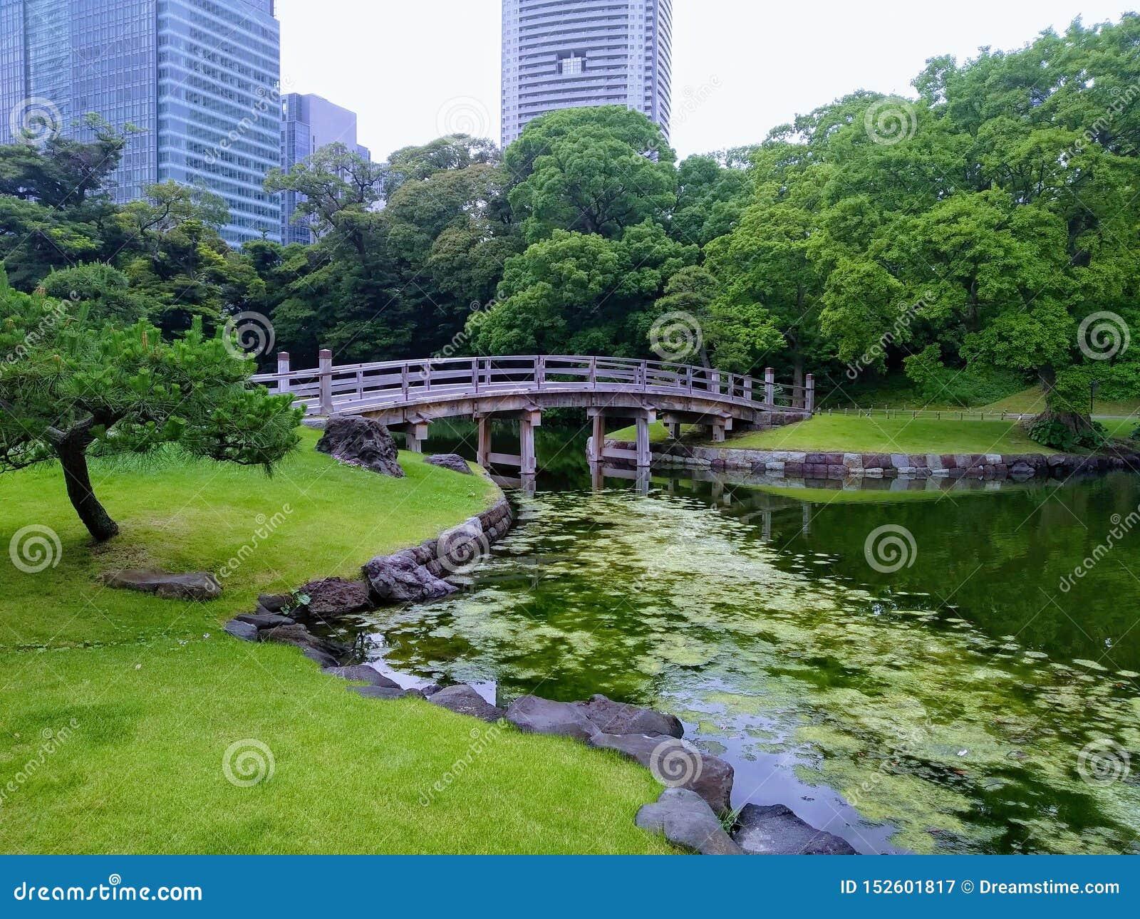 Vista giapponese del ponte del giardino a Tokyo