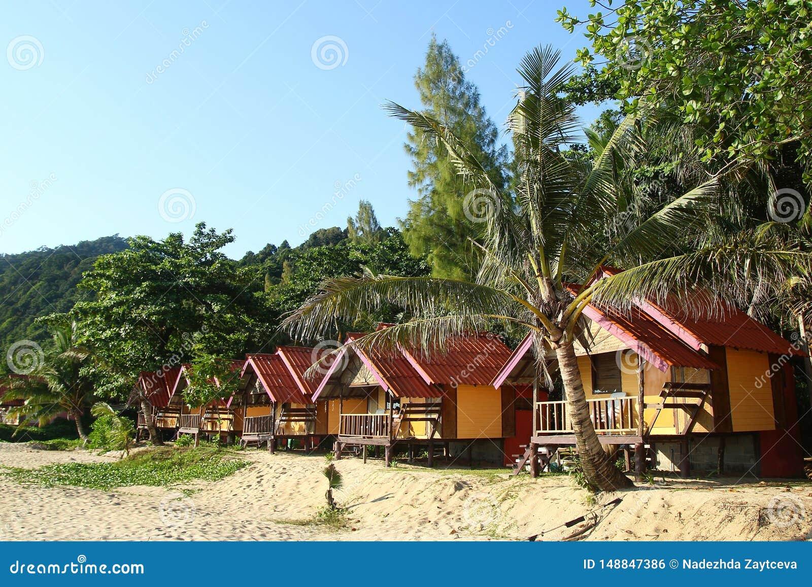 Vista nas casas de madeira pr?ximo ao mar entre palmeiras em um fundo da floresta ?mida