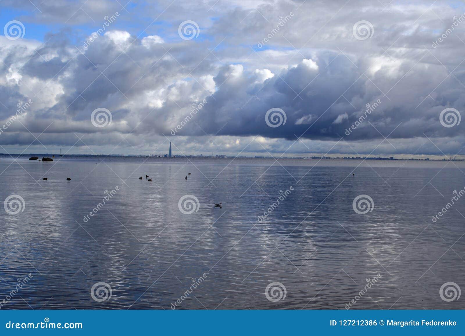 Vista no Golfo da Finlândia na estação do outono