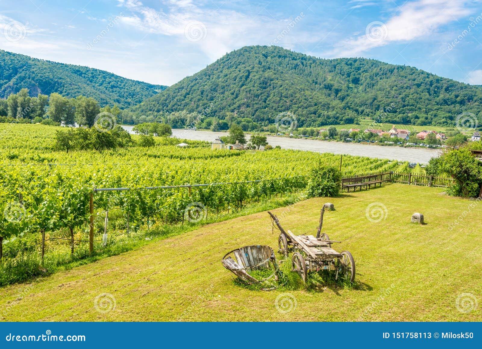 Vista nos vinhedos e no Danube River em Durnstein - Áustria
