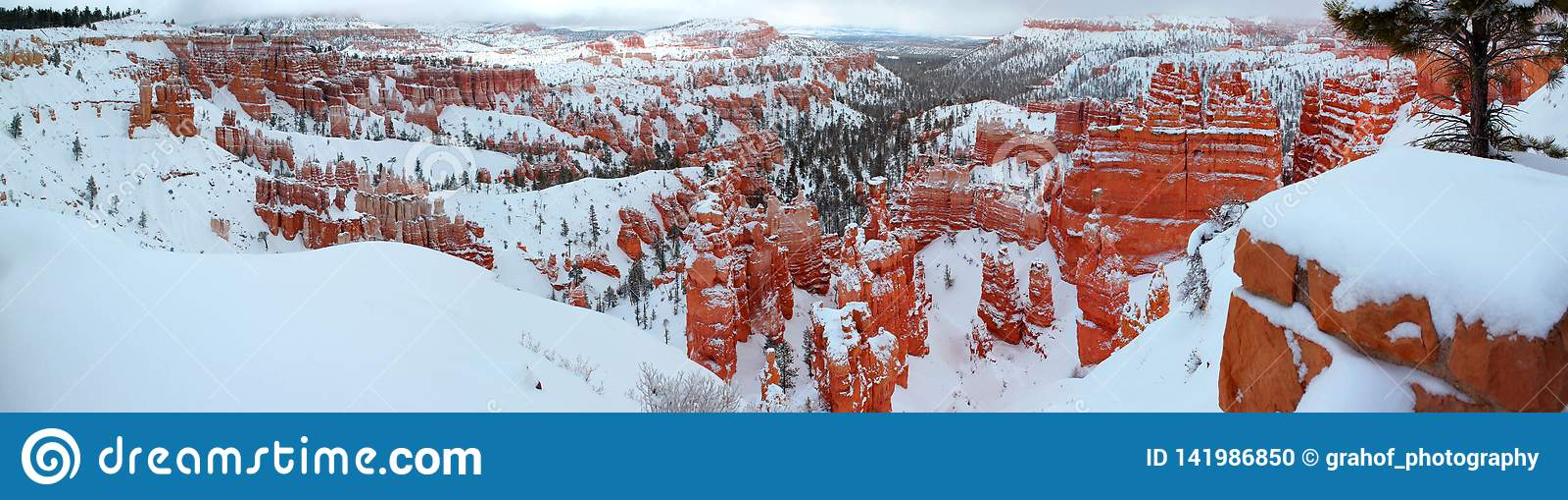 Vista panorámica hermosa del barranco Nationalpark de Bryce con nieve en invierno con las rocas rojas/Utah/los E.E.U.U.
