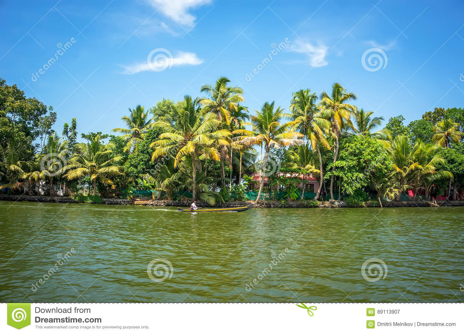 Vista panorâmica com árvores de coco e casa do pescador, paisagem das marés de Alleppey