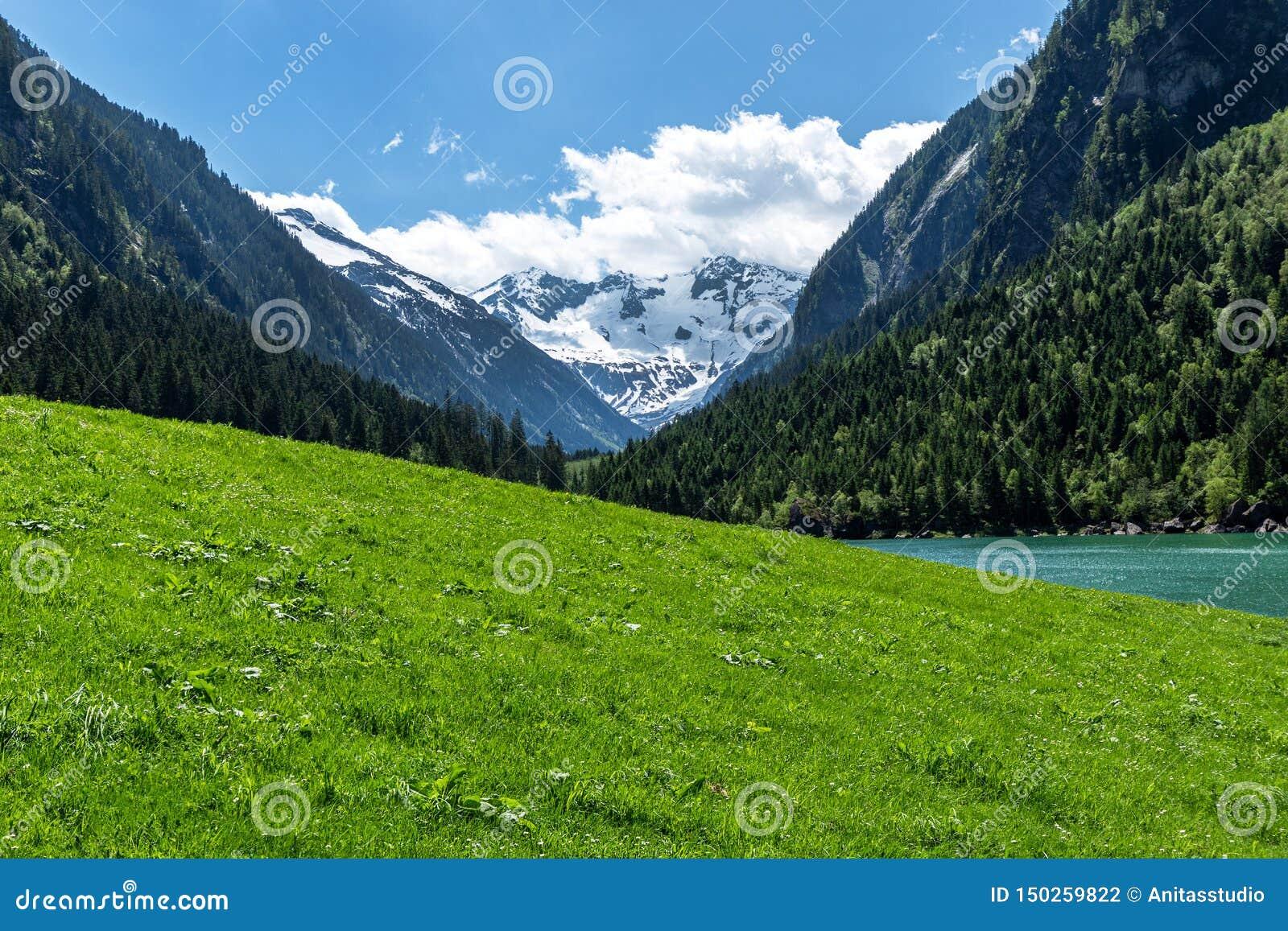 Vista panorâmica do cenário idílico da montanha nos cumes com o prado verde fresco e picos de montanha cobertos nevados, Na dos c