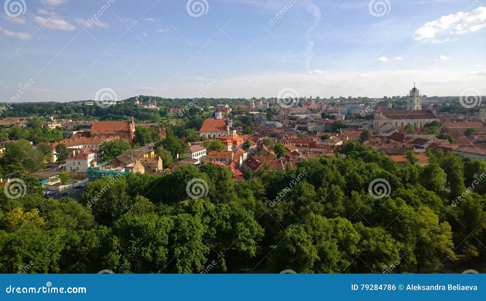 Vista panorâmica do monte do castelo em Vilnius
